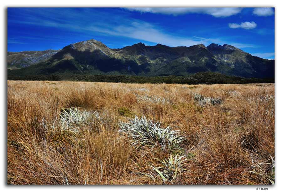 Wharepapa Arthur Range