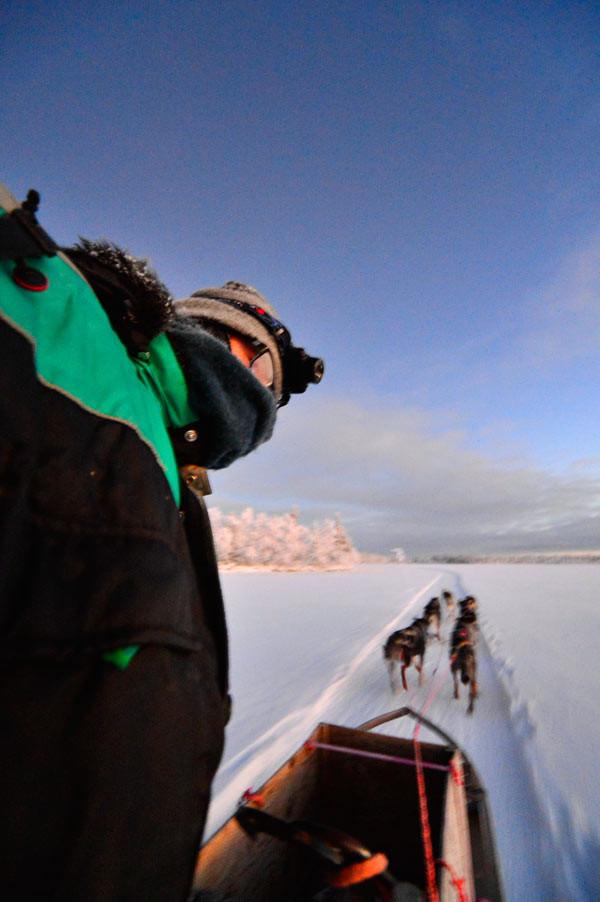 Schweden, Kiruna, Hundeschlitten