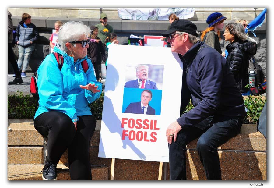 Fossil Fools