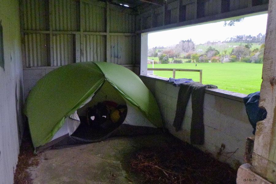 Camp in Wellsford