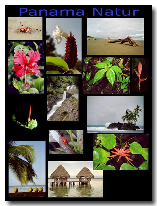 Panama Natur / Nature of Panama
