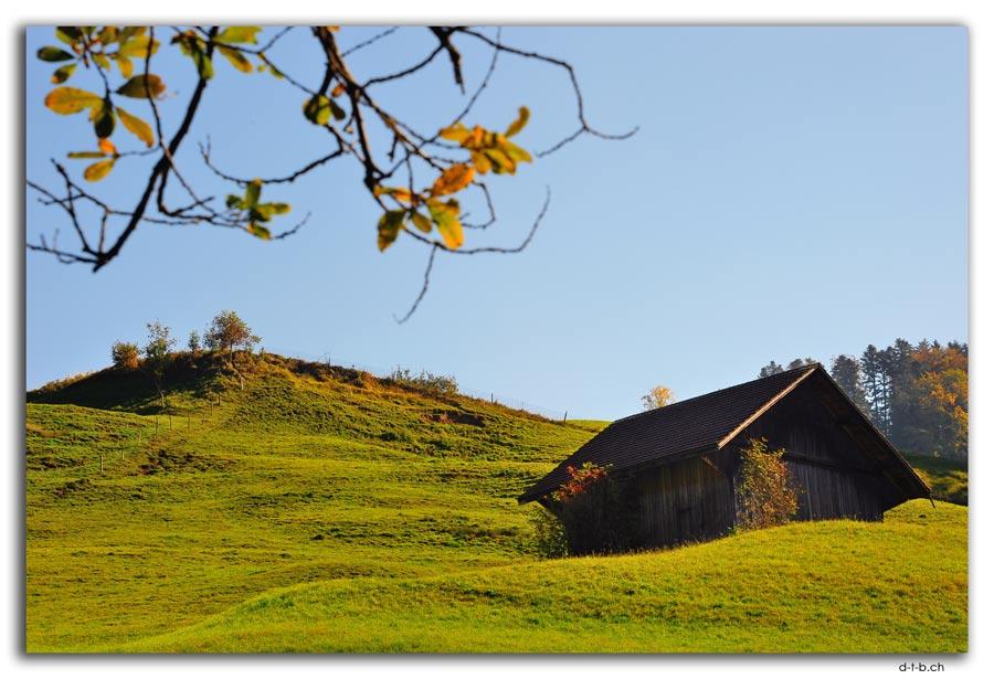 Zurcher Oberland