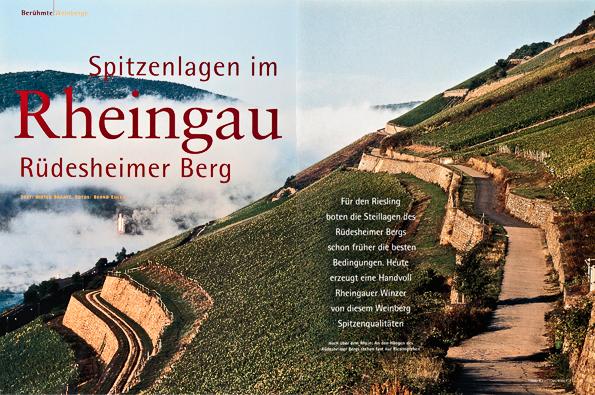 Weingourmet - Rheingau