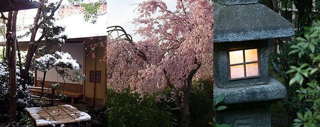季節を感じる日本庭園