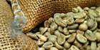 Rohkaffee, grüner Kaffee, ungeröstet