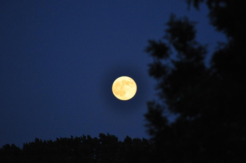 Observation de la lune est des étoiles à sainte megrine