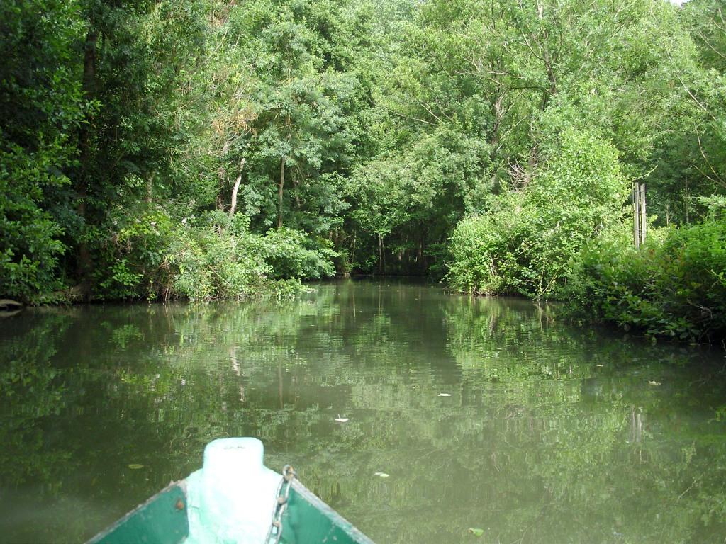 Le refuge gîte la Sotterie marais poitevin balade en barque