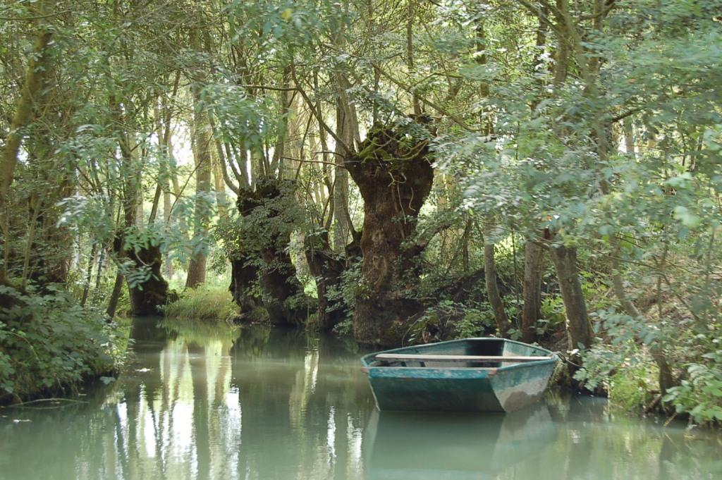 Balades en barque au coeur du marais poitevin