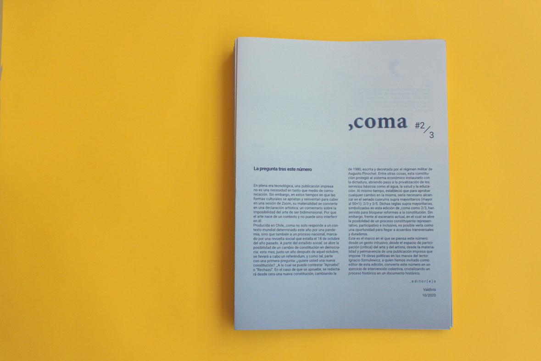 ,coma #2: 2/3 10/2020 Photo: Fernanda Aránguiz