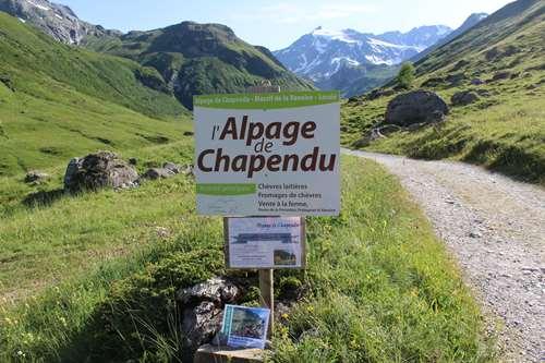 Alpage de Chapendu