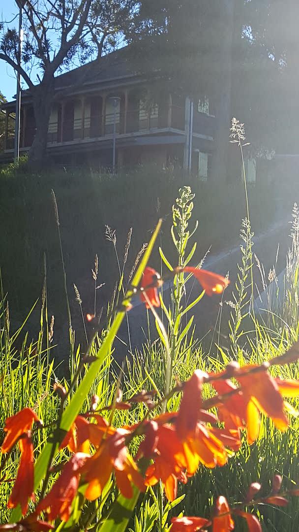 Vue sur le jardin HHH