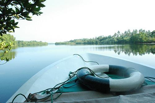 Boot-Safari auf dem Lake Tissamaharama
