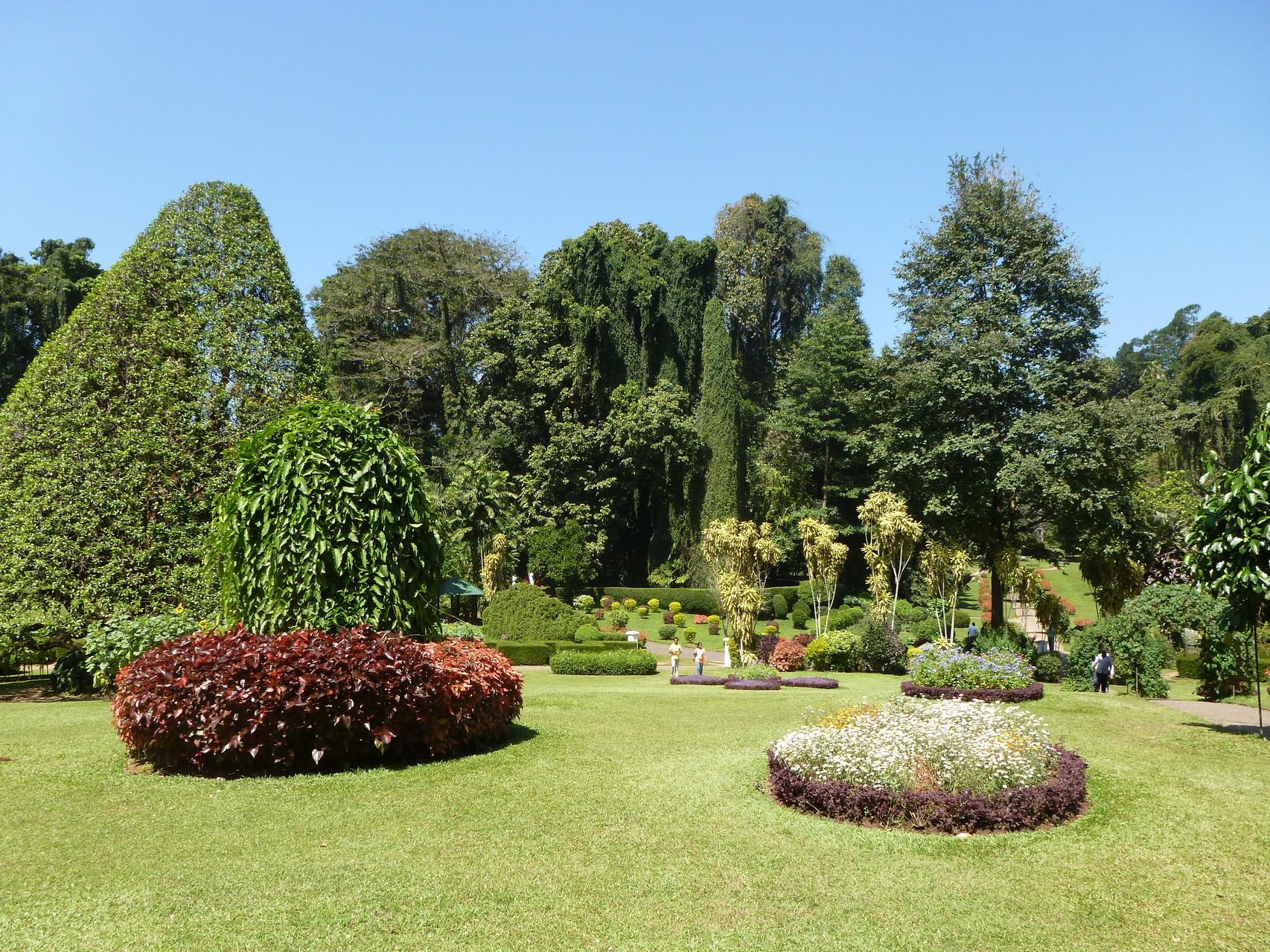 Königlicher botanischer Garten von Peradeniya