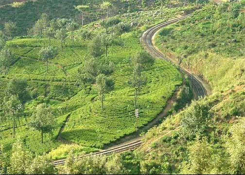 Zugfahrt durchs Hochland von Nuwara Eliya nach Ella