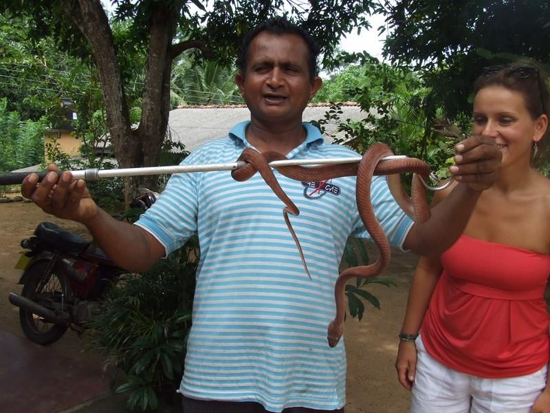 Besuch einer Schlangenfarm