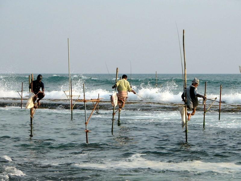 Stelzenfischer an der Südküste