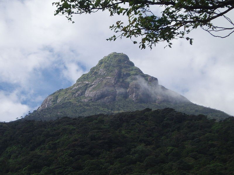 * Aufstieg zum Adam´s Peak