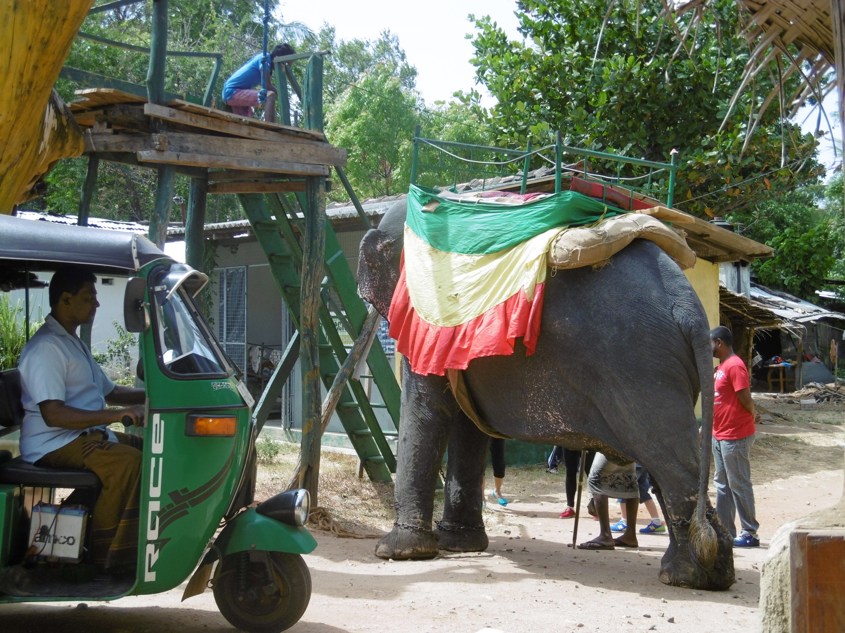 Elefantenreiten in Habarana