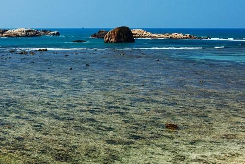 """Korallen-Insel """"Piegon Island"""""""