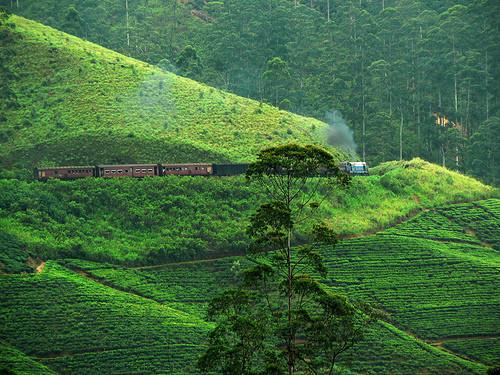 Zugfahrt durchs Hochland von Ella nach Nuwara Eliya