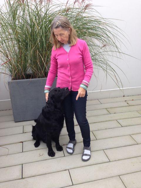 Bild: Lawinenhund und Trüffelhund Jabbar