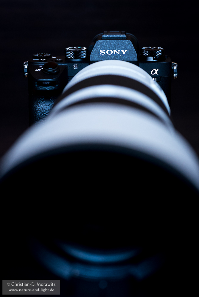 Sony Alpha 9 mit dem FE 100-400 mm f/4,5-5,6 GM OSS Telezoom
