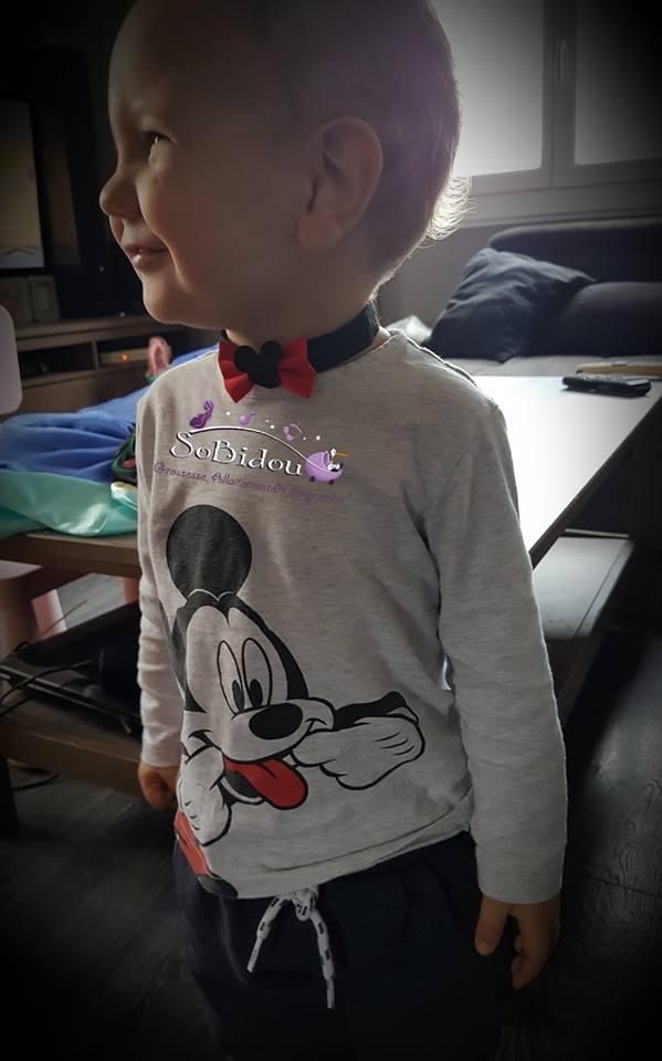 Noeud Papillon Mickey 8€