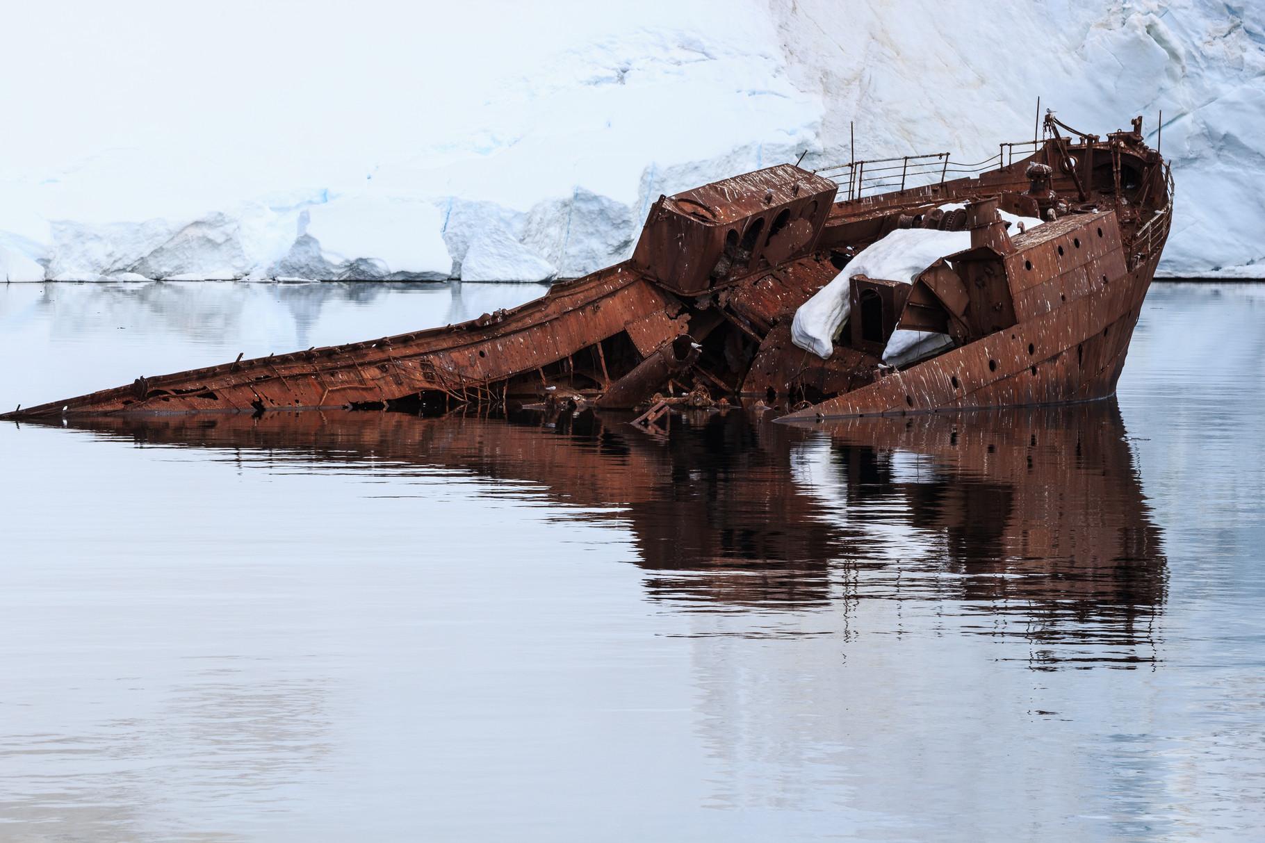 Segelreise mit der Bark Europa in die Antarktis: Foyn Harbour, Gouvernoren Shipwreck