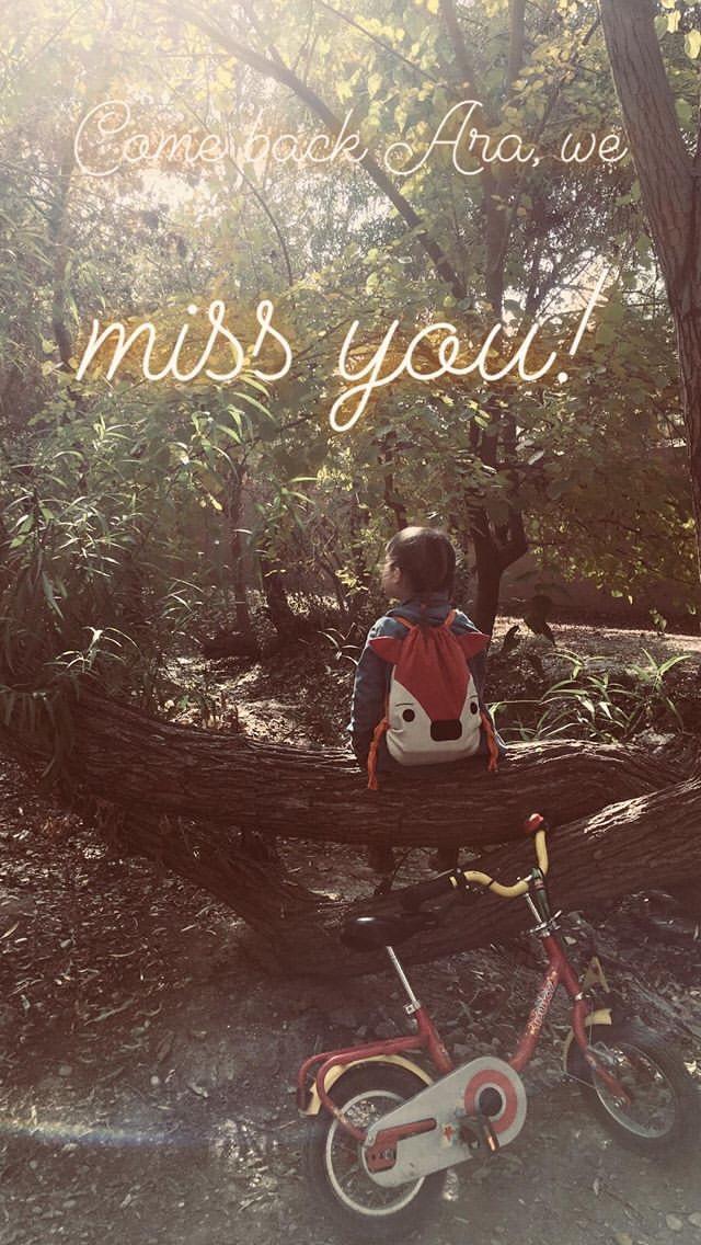 unsere tochter vermisst ara ganz besonders, ihr einziger freund ist weg