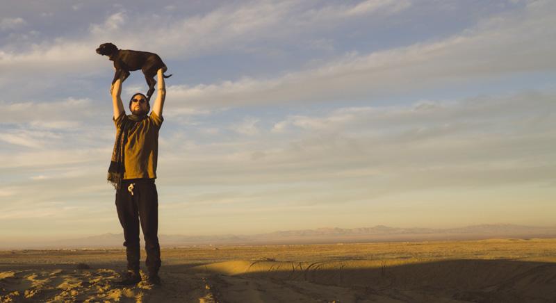 Hund in der Wüste, König der Löwen