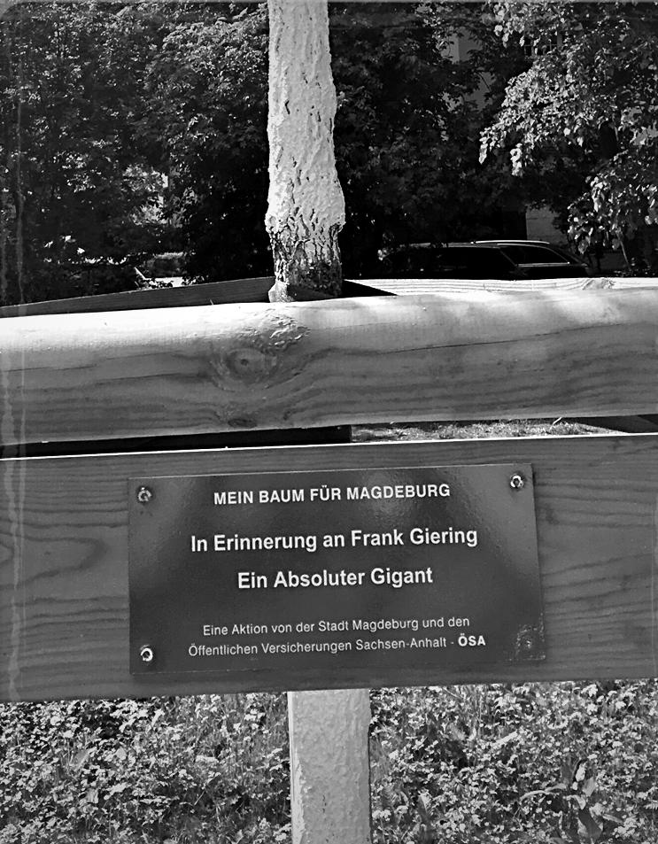 Schroteanlagen, Goethestraße