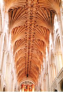 大聖堂の天井