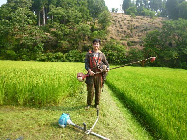 暑い時期の草刈り