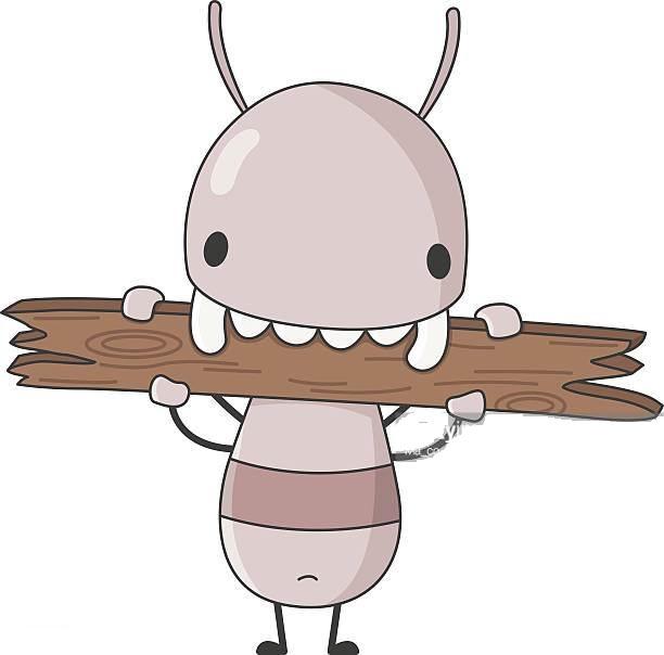 A)てんとう虫