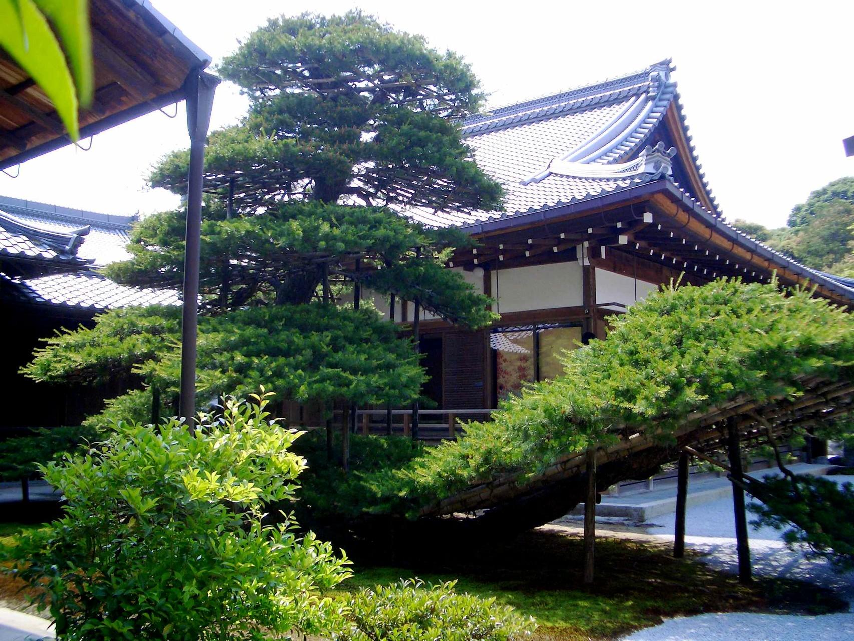 Zen Garden Golden Pavilion