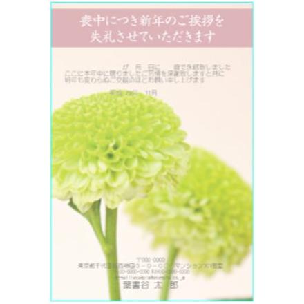 喪中見舞いテンプレート ふち無し喪中はがき ピンポンマム 菊の花