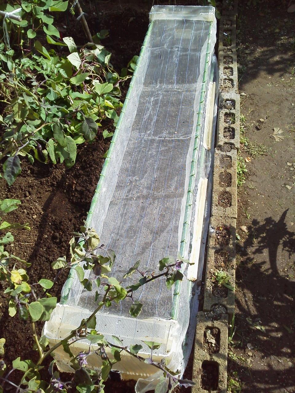 無農薬栽培するために自作したマルチネットです♪