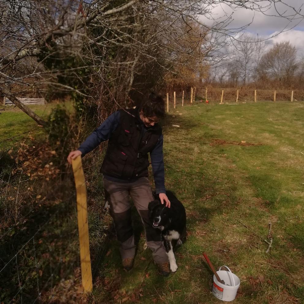 Un peu plus de 400 mètres de clôture terminée !