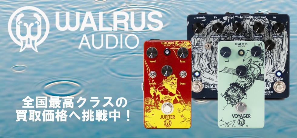 WALRUS AUDIO買取トップ