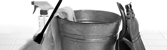 Reinigung und Pflege