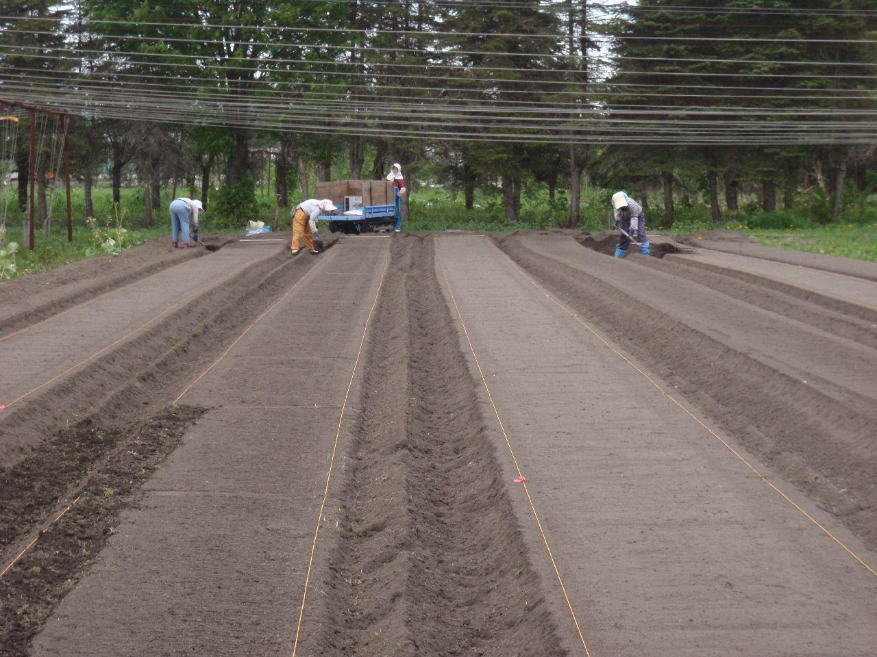 床の幅1mに満たない部分に、土を盛る。