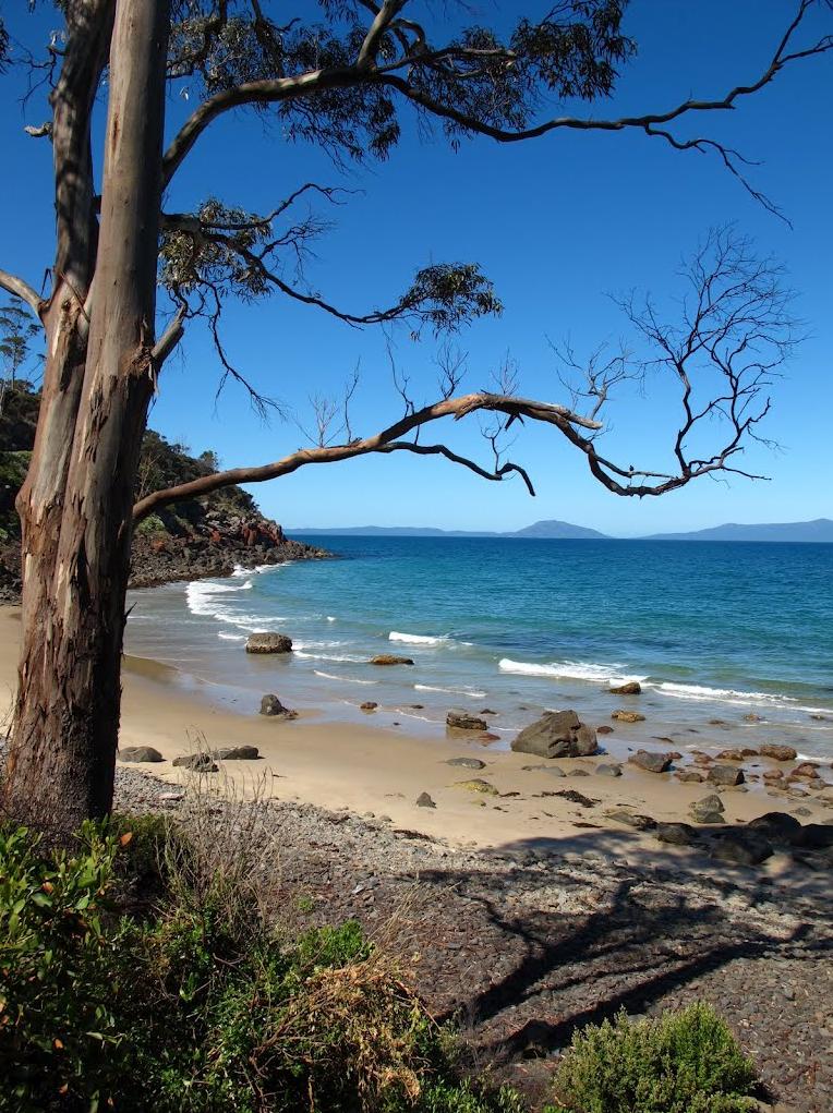 Cala a Rocky Hills Tasmània, Australia