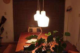 花水木の家/設計:ウチアトリエ