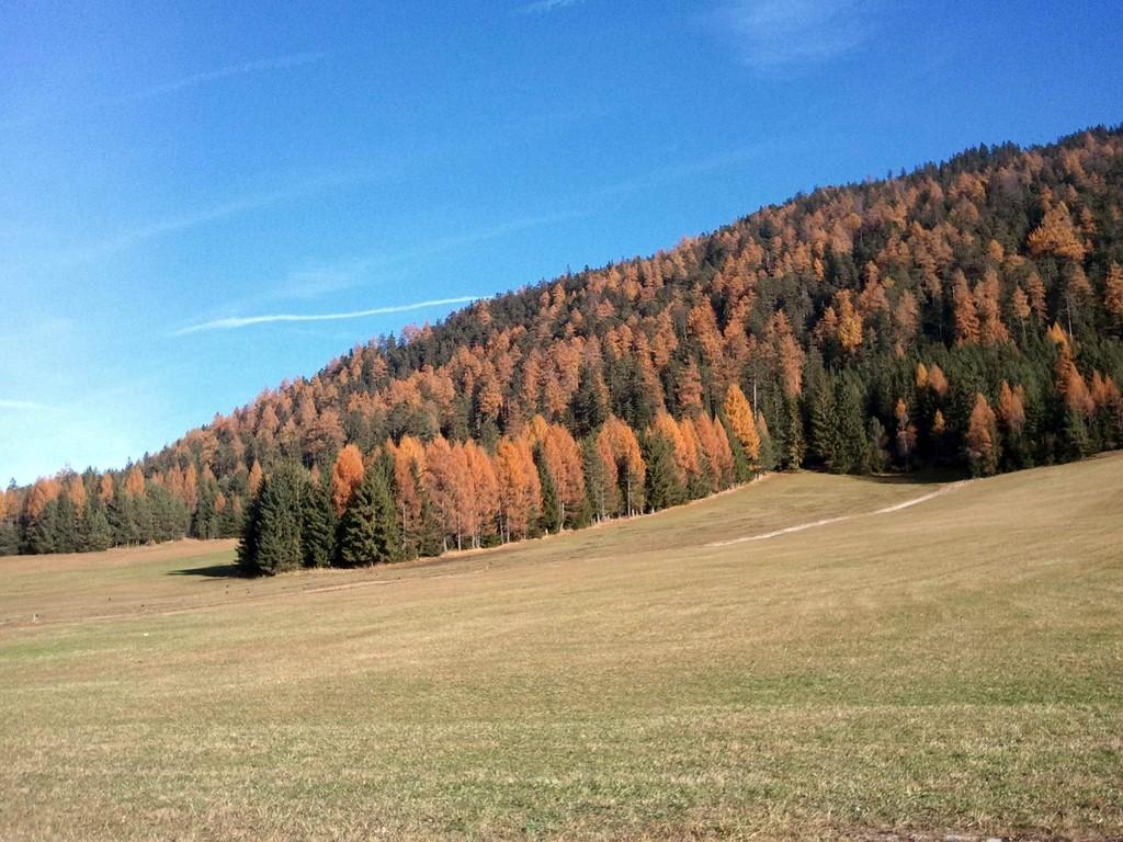 Der Herbst in seiner Farbenpracht