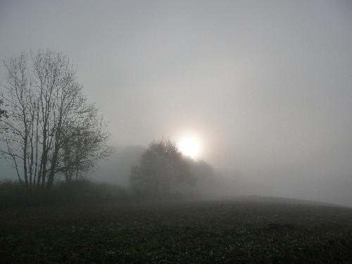 Nebel im Land