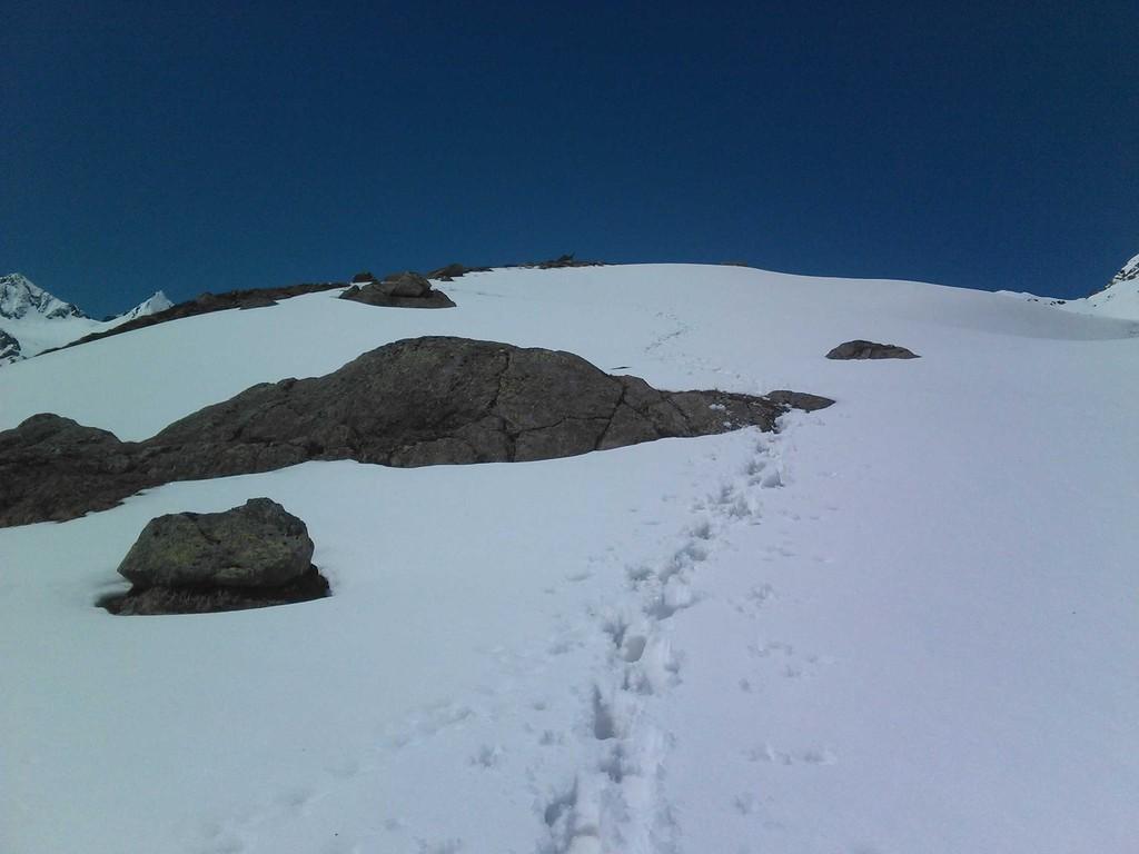 Auf auf zum Mutterbergsee - nicht geschafft - zu viel Schnee... 5. Juni 2010