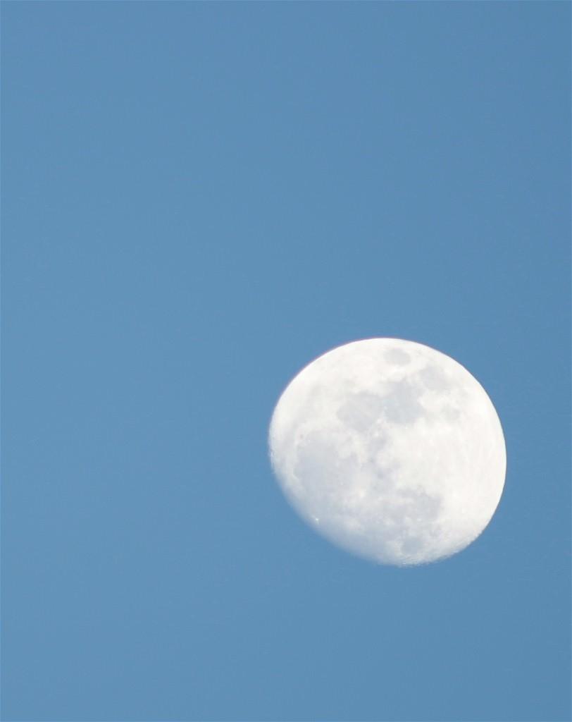 Mond im Blauen/ 23. 03. 2014