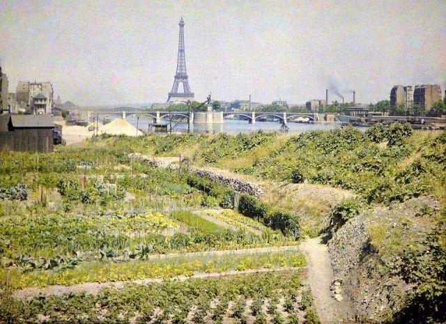 potagers, quai Louis Blériot, musée Albert Kahn
