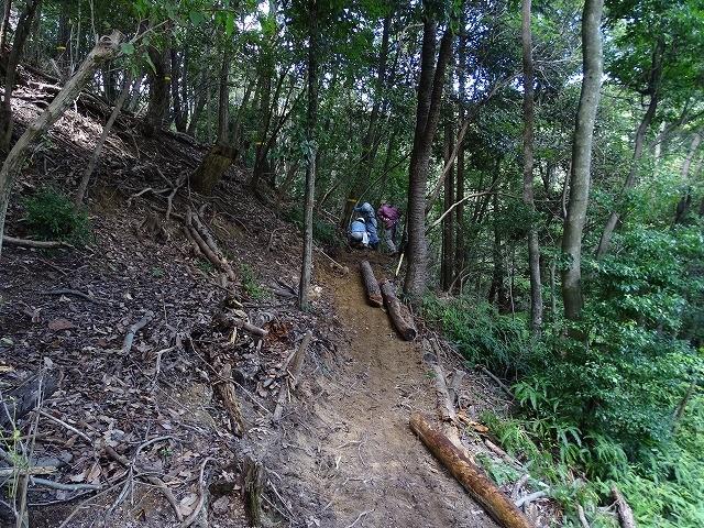 「シマダモユレル」周遊道路建設開始、木の根っこ、岩に行く手を阻まれ難工事が予想される。