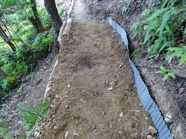 シマダモユレル周遊道、形が出来てきました。担当主任は、材にする枯死木選び伐倒設置とご苦労されています。「為せば成」る。